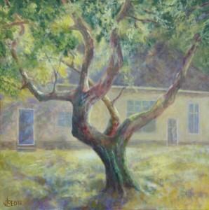 Oude appelboom - Hans van der Vloed