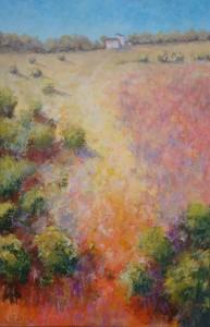 Toscane - helling met struikgewas - Hans van der Vloed