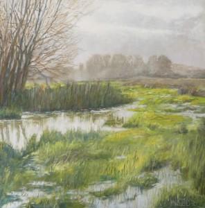 Nederland waterland - Hans van der Vloed