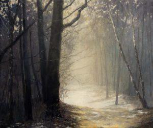 Winter in de bossen bij Austerlitz - Hans van der Vloed