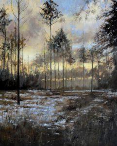 Winterschemering - Hans van der Vloed