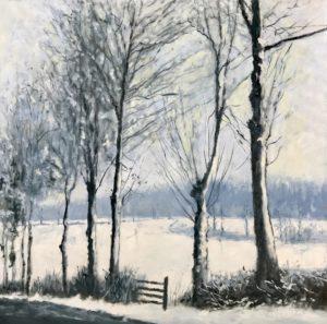 Sneeuw in het Gooi - Hans van der Vloed