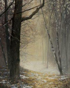 Winter in de bossen bij Austerlitz (2) - Hans van der Vloed