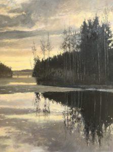 Het laatste ijs - Hans van der Vloed