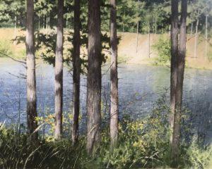 Duindal op Westerschouwen - Hans van der Vloed