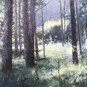 Open plek in het bos - Hans van der Vloed