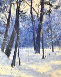 Winterbos - Hans van der Vloed