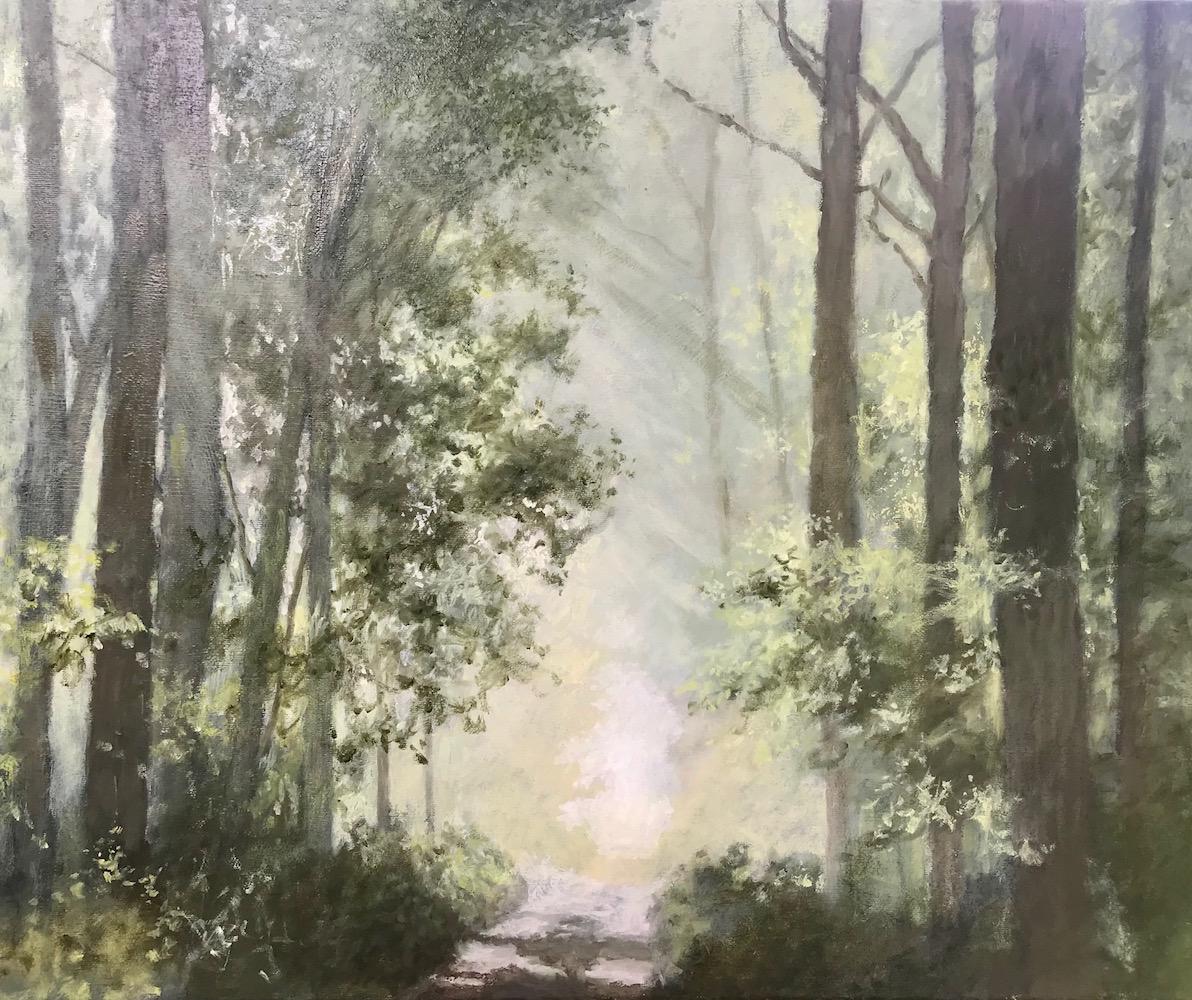Het geheimzinnige bospad