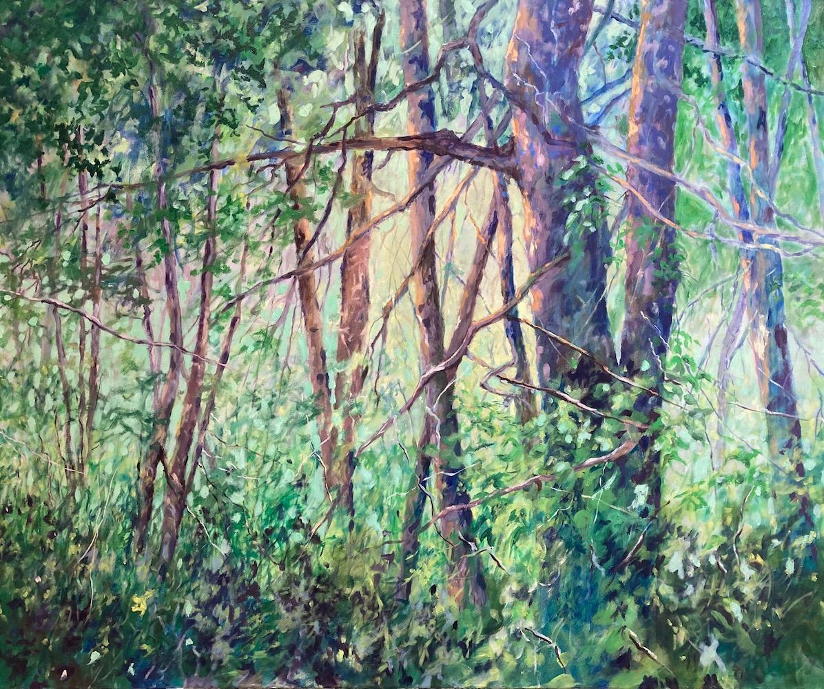 Zomaar een plekje in het bos